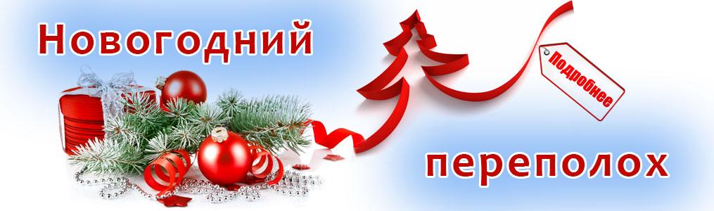 Новогодний переполох